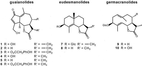 Một số chất thuộc nhóm Sesquiterpen